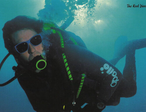 The cool Diver